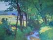 Potok v krajině