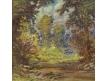 Říčka v lese