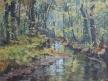 Potok v podzimu